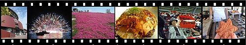 広島ニュース 食べタインジャー へ、ネタ投稿してみませんか?