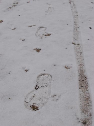 広島 雪の日 2